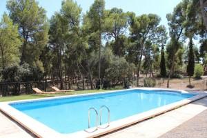 Piscina mas a villalonga for Descuidos en la piscina