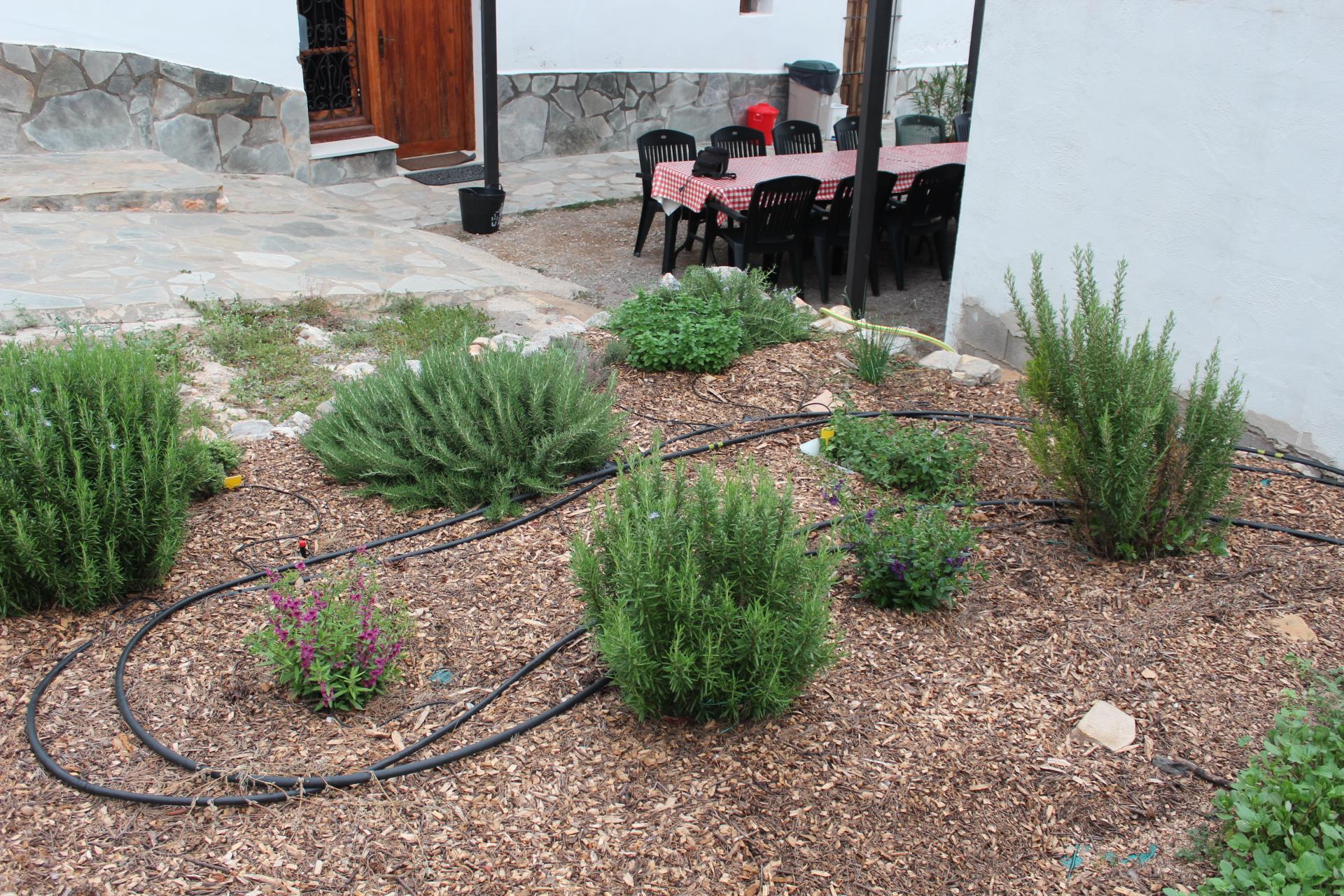 Jardin de plantas aromaticas mas a villalonga - Jardin de aromaticas ...